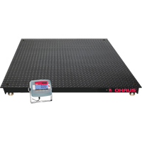 VN Series Economical Floor Scale IA560 | Ontario Safety Product