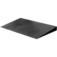 VN Series Economical Floor Scales - Ramp IA562 | Ontario Safety Product