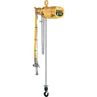Budgit® Series 6000 Air Hoists LS920 | Ontario Safety Product
