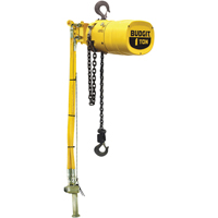 Budgit® Series 6000 Air Hoists LS926 | Ontario Safety Product