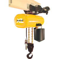XL Series Air Chain Hoists LS955 | Ontario Safety Product