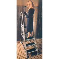 Stop & Step Ladder MD628 | Ontario Safety Product