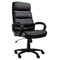 Activ™ Series A-601 Office Chair OP806 | Ontario Safety Product