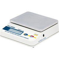Economy Precision Scales PE131 | Ontario Safety Product