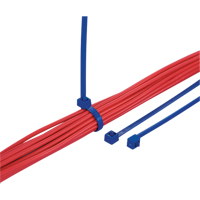 Metal Detectable Cable Ties PF429 | Ontario Safety Product