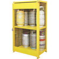 Gas Cylinder Cabinets SAF847 | Ontario Safety Product
