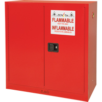 Paint/Ink Cabinet SDN650 | Ontario Safety Product