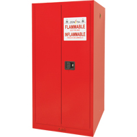Paint/Ink Cabinet SDN652 | Ontario Safety Product