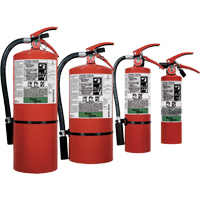 Pyro-Chem FE-36™ Clean Agent Fire Extinguishers SDN829 | Ontario Safety Product