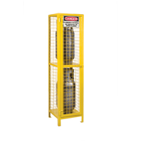 Gas Cylinder Cabinets SEB838 | Ontario Safety Product