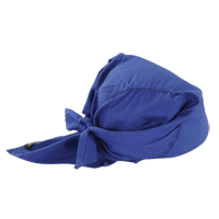 Chill-Its® 6710 Cooling Triangle Hats SEC860 | Ontario Safety Product