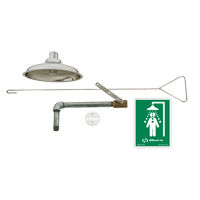 Flush to Ceiling Drench Shower SGC283 | Ontario Safety Product