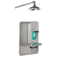 Eye/Face Wash and Shower SGC296 | Ontario Safety Product