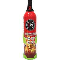 Foam Fire Extinguisher SGC461 | Ontario Safety Product