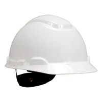 Hardhat with 4-Point Suspension  SGD783 | Ontario Safety Product