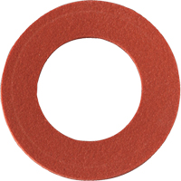 Replacement Inhalation Gaskets SR190 | Ontario Safety Product