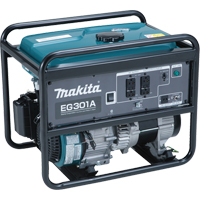 3000-W Generators TMA067 | Ontario Safety Product
