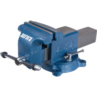 Heavy-Duty Bench Vise TYL100 | Ontario Safety Product