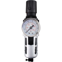 Modular Air Filter/Regulator (Gauge Included) TYY175 | Ontario Safety Product