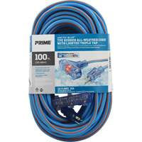 Arctic Blue™ All-Weather TPE-Rubber Lighted End Extension Cords w/Primelok® & Primelight® XB904 | Ontario Safety Product