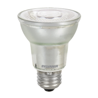 Ultra LED™ Glass PAR Lamp XH163 | Ontario Safety Product